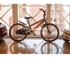"20"" Smart Bicycle ( Gray / Tangerine Orange )"