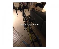 Road bike silverback strela