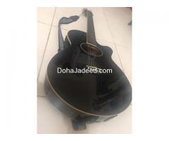 FERNANDO Acoustic/Electric Guitar